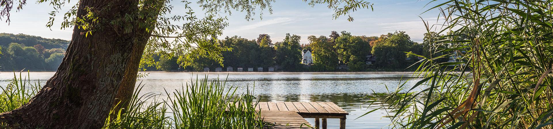 Morgenstimmung am Weßlinger See