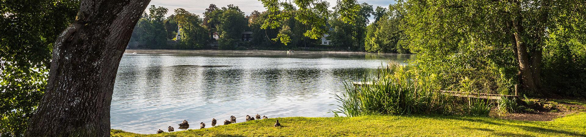 Stille am Weßlinger See